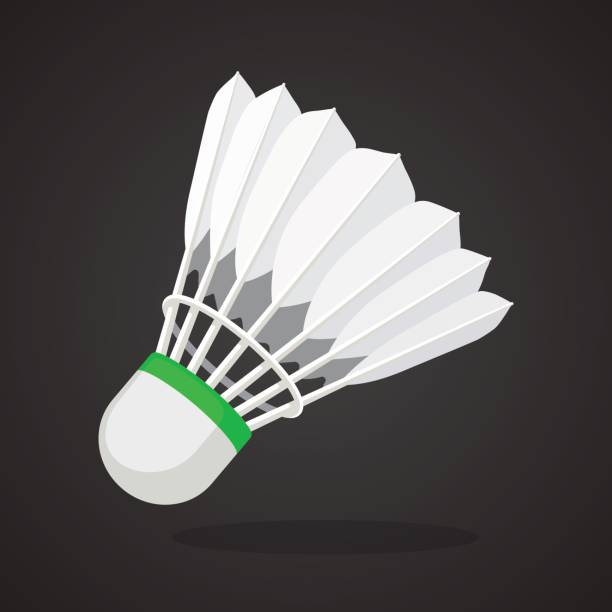 Shuttlecock for badminton from bird feathers Vector illustration in flat style. Shuttlecock for badminton from bird feathers. Sports equipment. Decoration for greeting cards, prints for clothes, posters, wallpapers shuttlecock stock illustrations