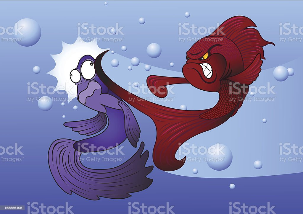 Siamese fighting fish royalty-free stock vector art