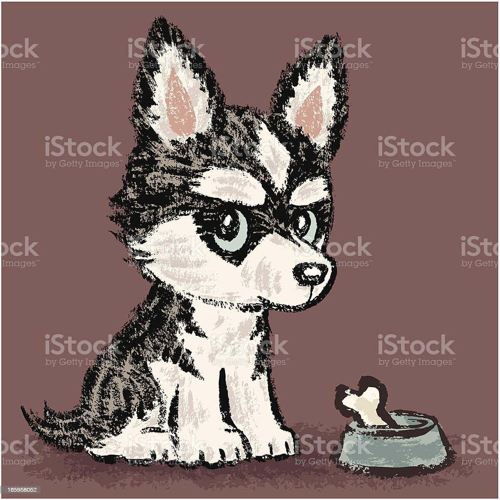 Siberian Husky and meal royalty-free stock vector art