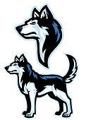 siberian husky dog mascot set