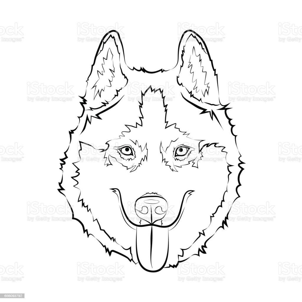 Siberian Husky Dog Stock Vector Art & More Images of Animal ...