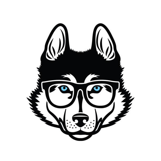 ilustraciones, imágenes clip art, dibujos animados e iconos de stock de perro husky siberiano que lleva anteojos aislados ilustración vectorial - ojos azules