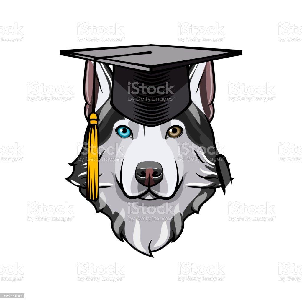 Ilustración de Graduado De Husky Siberiano Sombrero Del Casquillo De ...