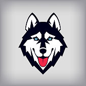 Siberian husky head sign or icon. Good-natured dog shows its tongue.
