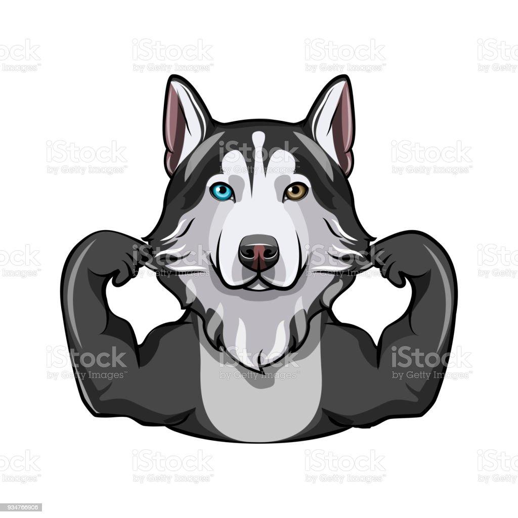 Ilustración de Husky Siberiano Con Los Músculos Raza De Perro ...