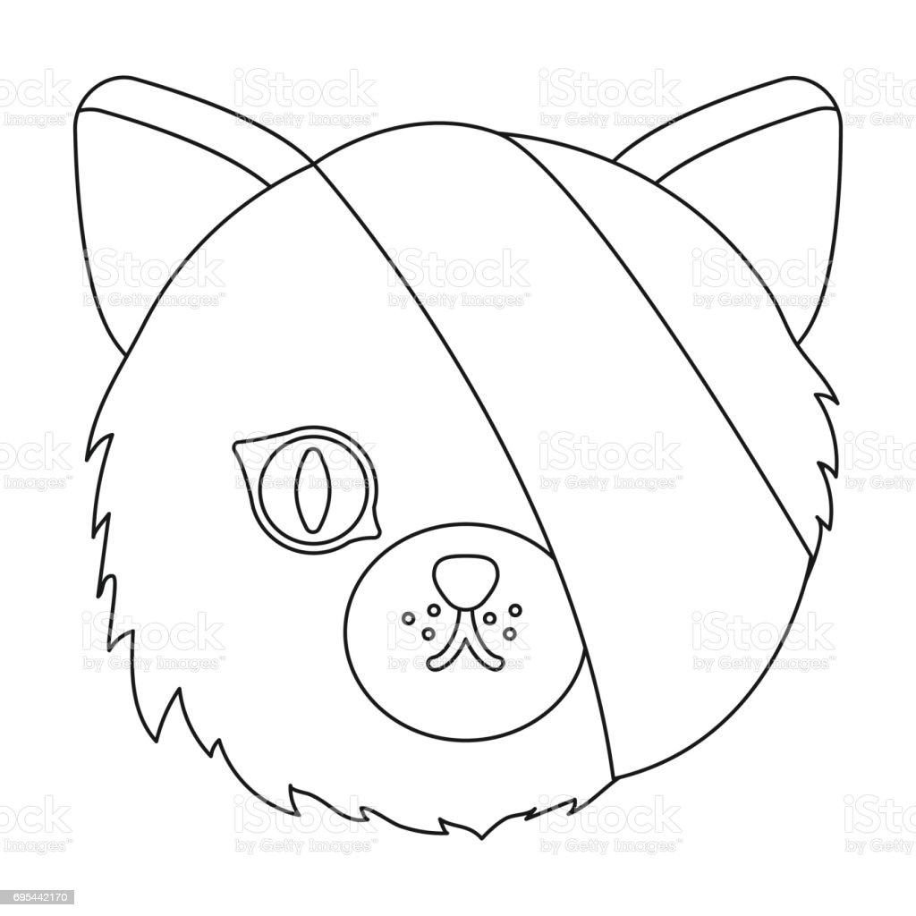 sick cat with bandage on a head icon in outline style isolated on