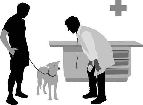 Sick Dog At The Veterinarian