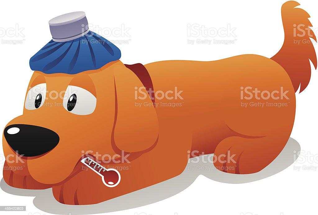 Sick dog vector art illustration