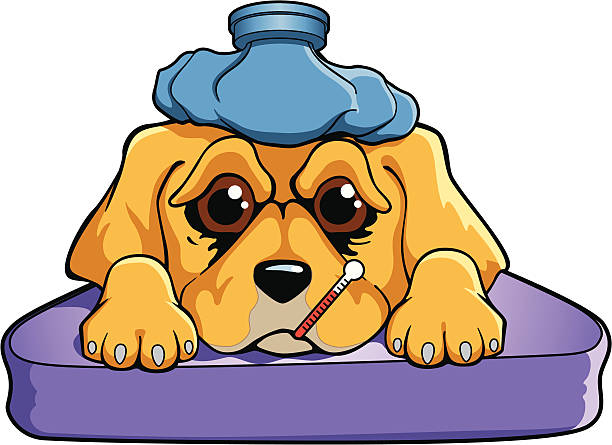 Royalty Free Cartoon Sick Dog With A Thermometer Clip Art ...