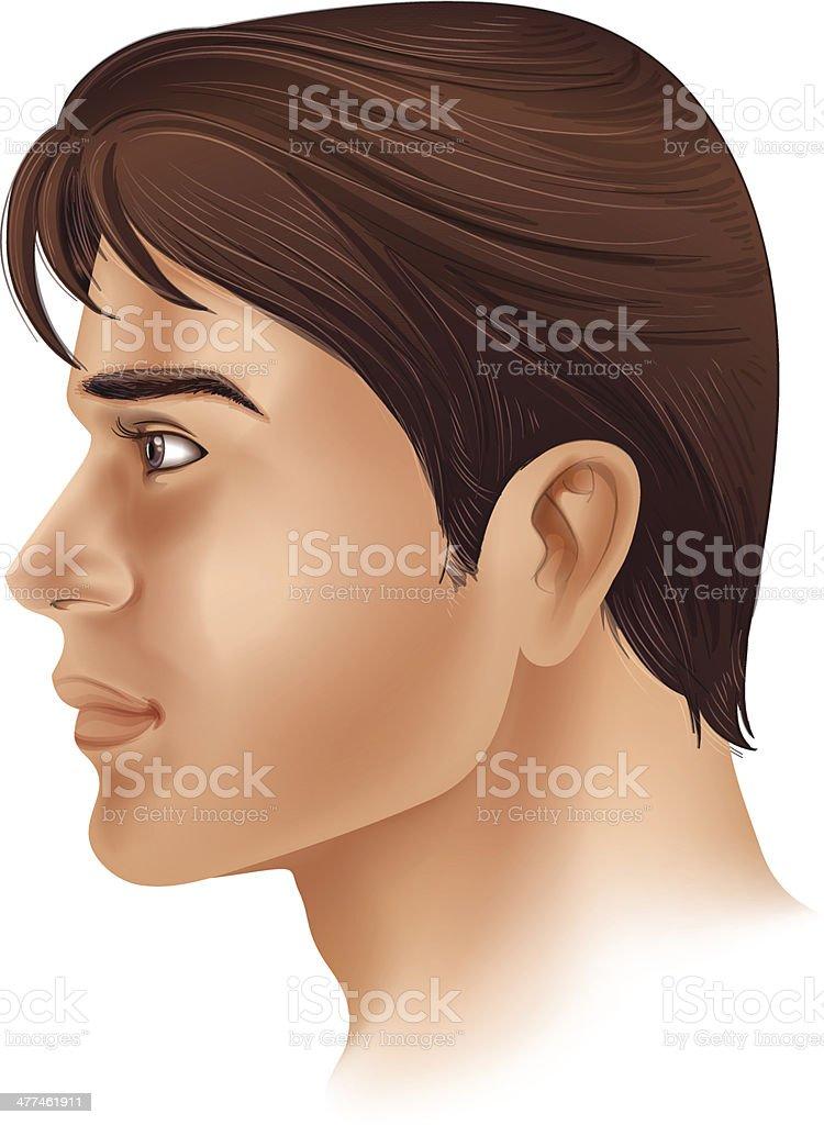 Ilustración de Vista Lateral De Un Hombre Cara y más banco de ...