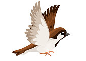 Side view of flying Sparrow bird. Flat cartoon character design. Colorful bird icon. Cute sparrow for world sparrow day. Vector illustration isolated on white background.