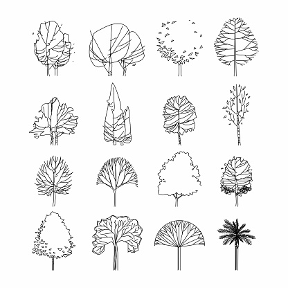 Side View Set Of Graphics Trees Elements Outline Symbol