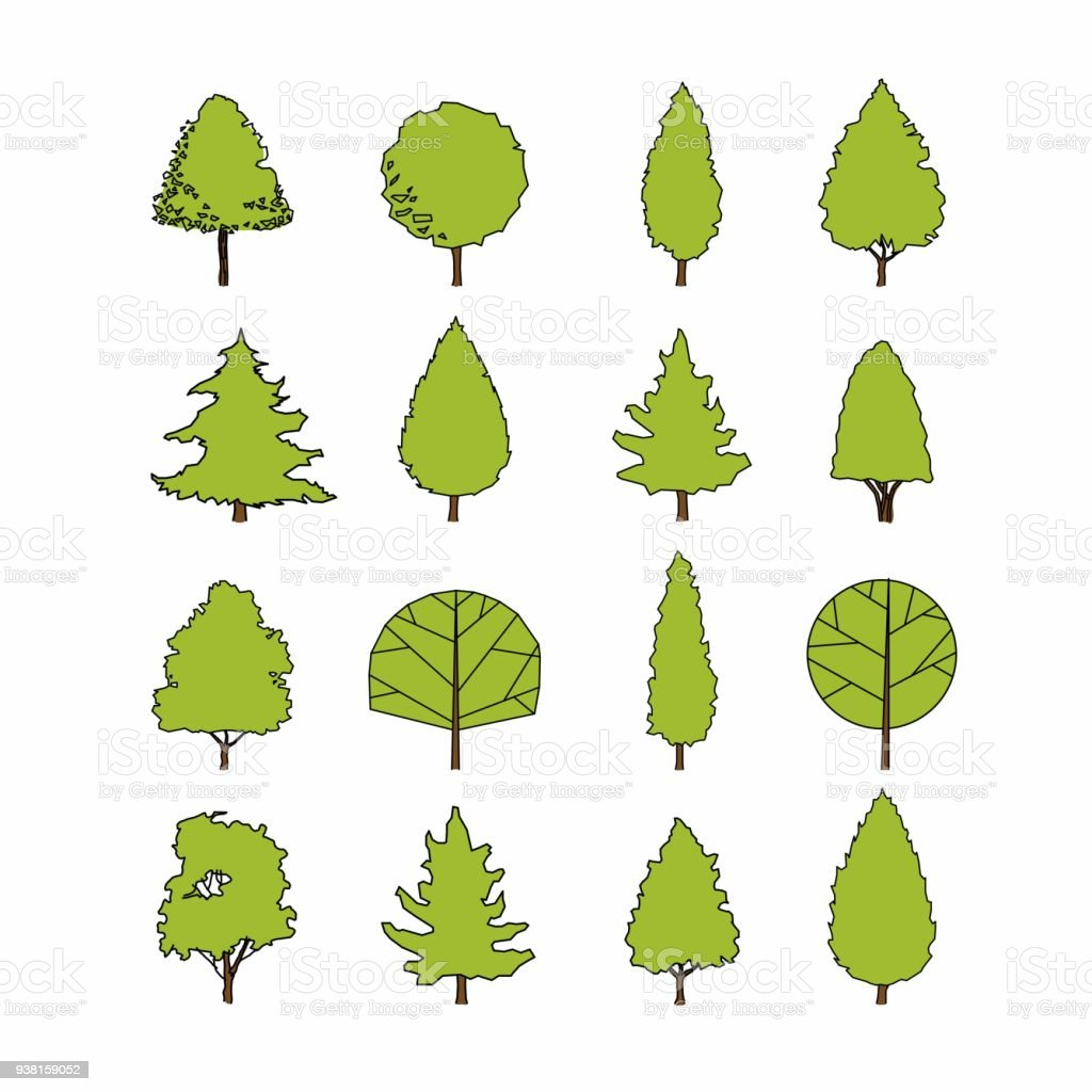 Side View Set Of Green Graphics Trees Elements Outline Symbol For Architecture And Landscape Design