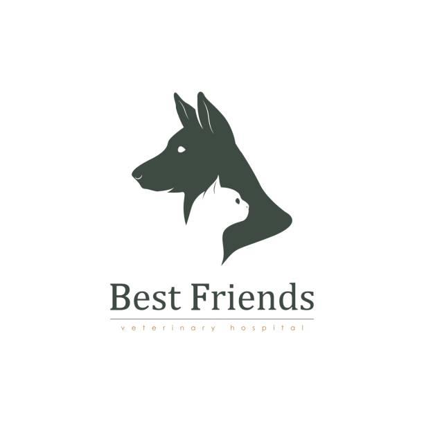 ilustrações, clipart, desenhos animados e ícones de cadastre-se para uma clínica veterinária com gato e cachorro. - veterinário