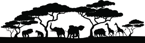 silhouette african safari animal landscape scene - animals stock illustrations
