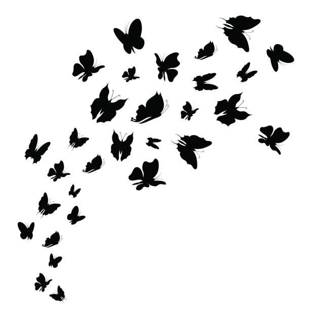 silhouette schwarze fliege schwarm von schmetterlingen. vektor - schmetterling stock-grafiken, -clipart, -cartoons und -symbole