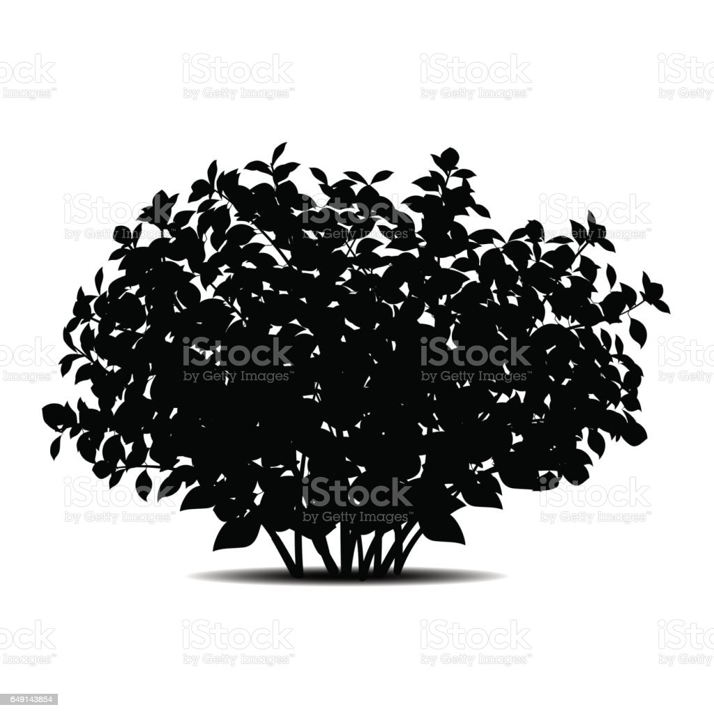 silhouette bush with leaves and shadow vector art illustration
