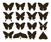 Silhouette butterflies. Simple collection of hand drawn black tattoo shapes, vintage fly insect set. Vector butterfly drawing