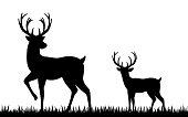 Vector illustration of Silhouette deer on white background