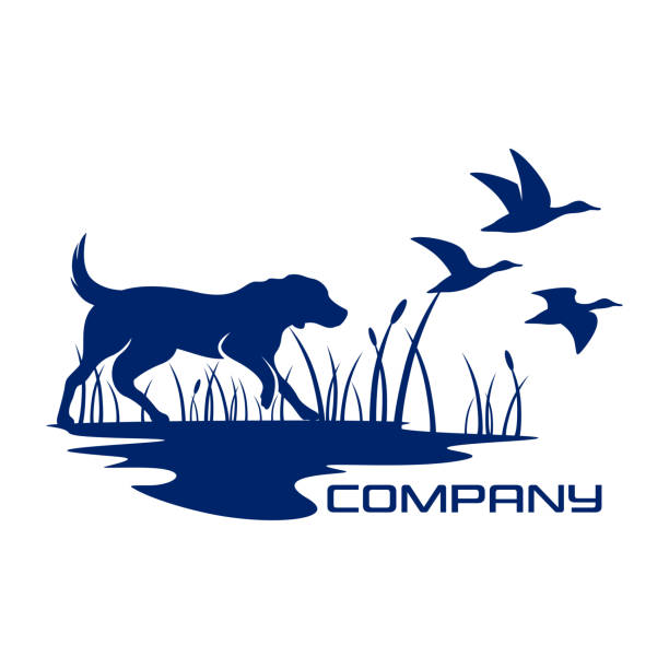 Silhouette dog hunting symbol Silhouette dog hunting symbol duck bird stock illustrations