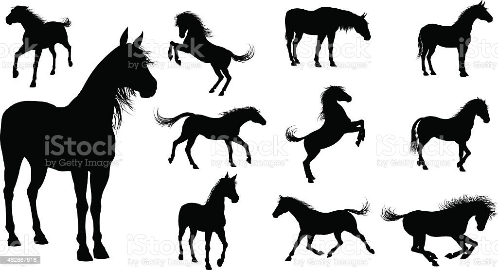 Silhouette Horses vector art illustration
