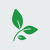 Silhouette icon bay leaf