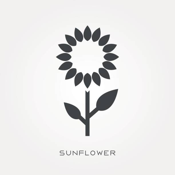 silhouette icon sunflower - sunflower stock illustrations