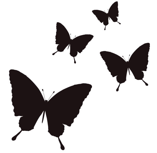 Silhouette illustration made into butterfly color vector art illustration