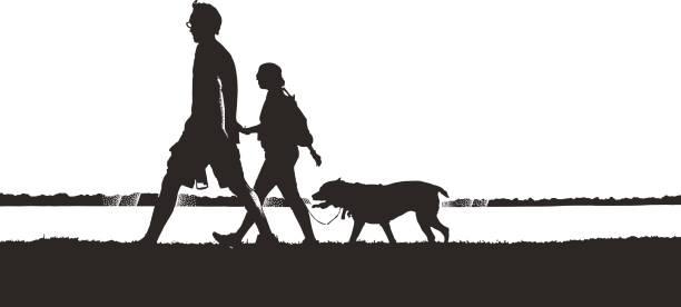 Silhouette illustration of couple walking dog Silhouette of a couple walking dog around a li lakeshore stock illustrations