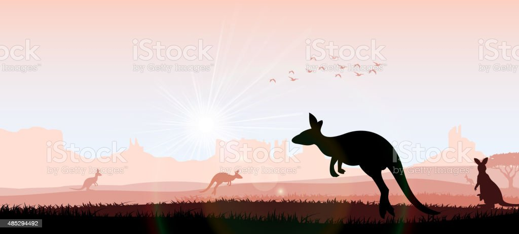 Silhouette kangaroo in the evening vector art illustration