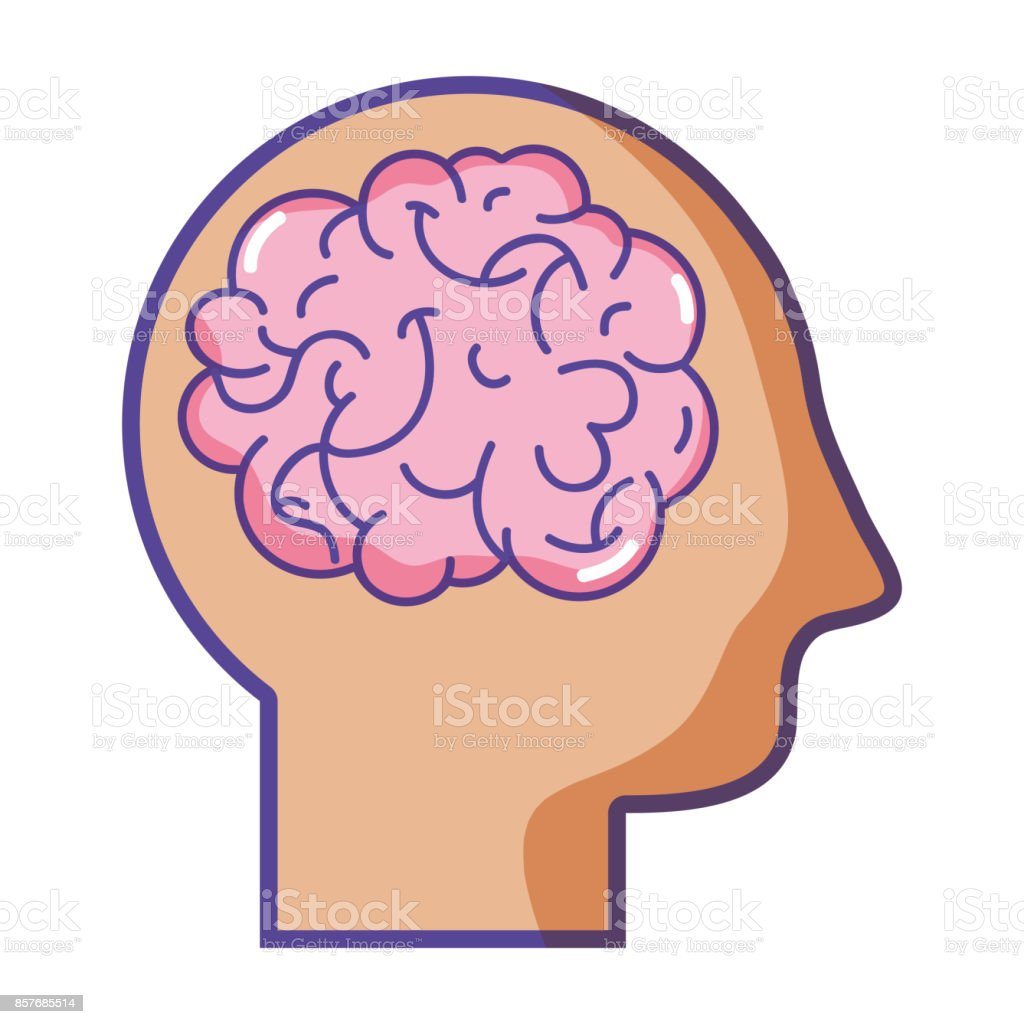 Hombre Silueta Con Diseño De Anatomía Cerebral Illustracion Libre de ...
