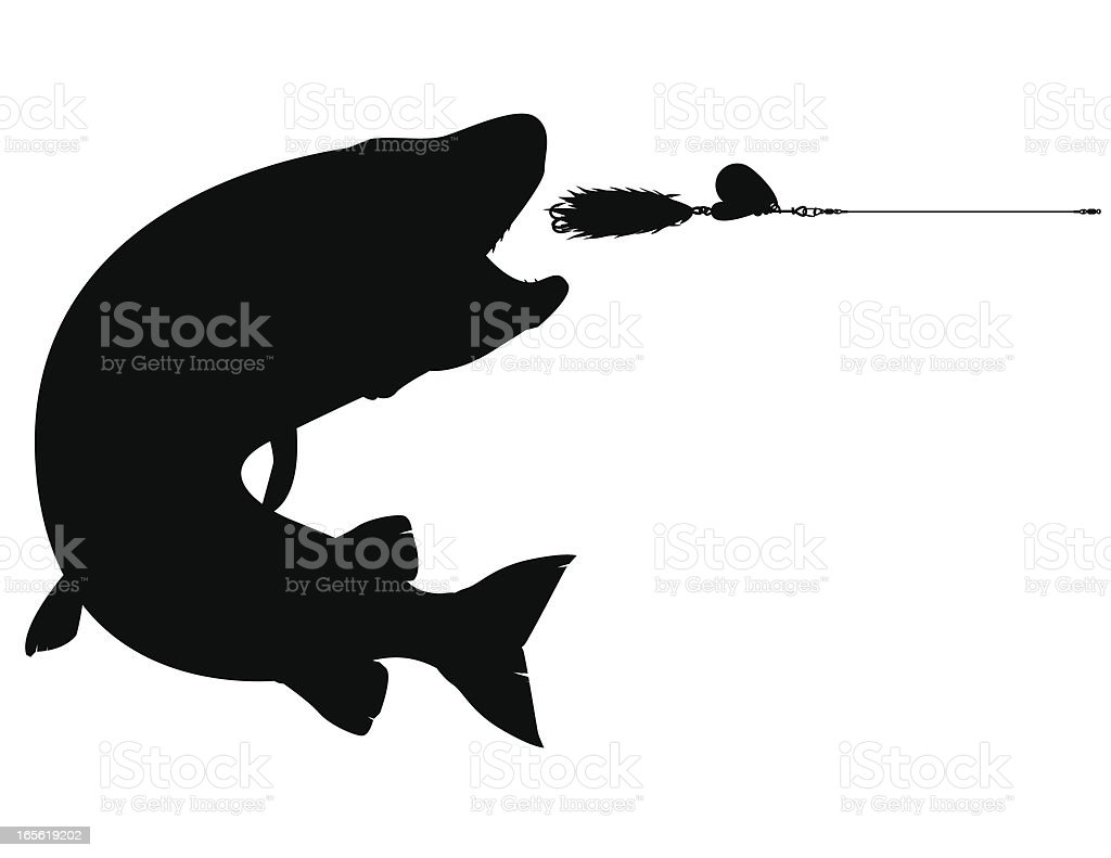 Silhouette: Muskellunge Striking a Lure royalty-free stock vector art