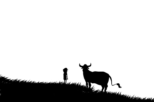 Silhouette of a cowboy with a big cow or bull in the meadow.
