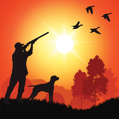 A silhouette of a duck hunter with a dog at sunset