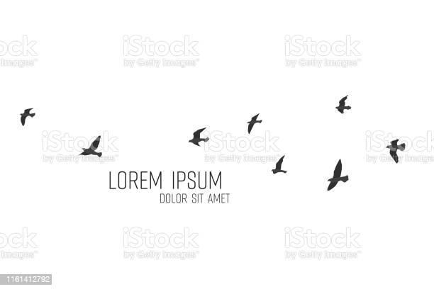 Silhouette of a flock of flying birds vector id1161412792?b=1&k=6&m=1161412792&s=612x612&h=kn4ujuwr240atsjocuv58id4rqfcvxly tgdwaeykew=