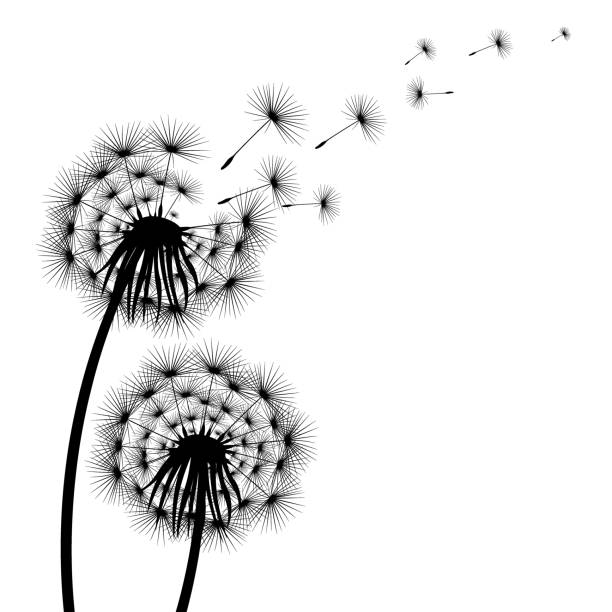 Royalty Free Dandelion Blowing In The Wind Tattoo Clip Art Vector