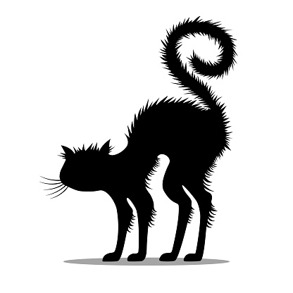Silhouette of a frightened, hissing black cat.