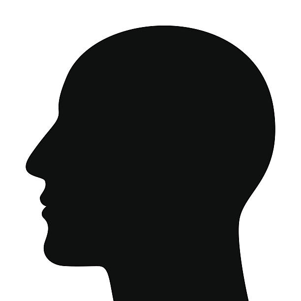 Silhouette of a head Silhouette of a head isolated on white background human head stock illustrations