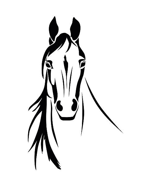 Silhouette of a horse head front view vector art illustration