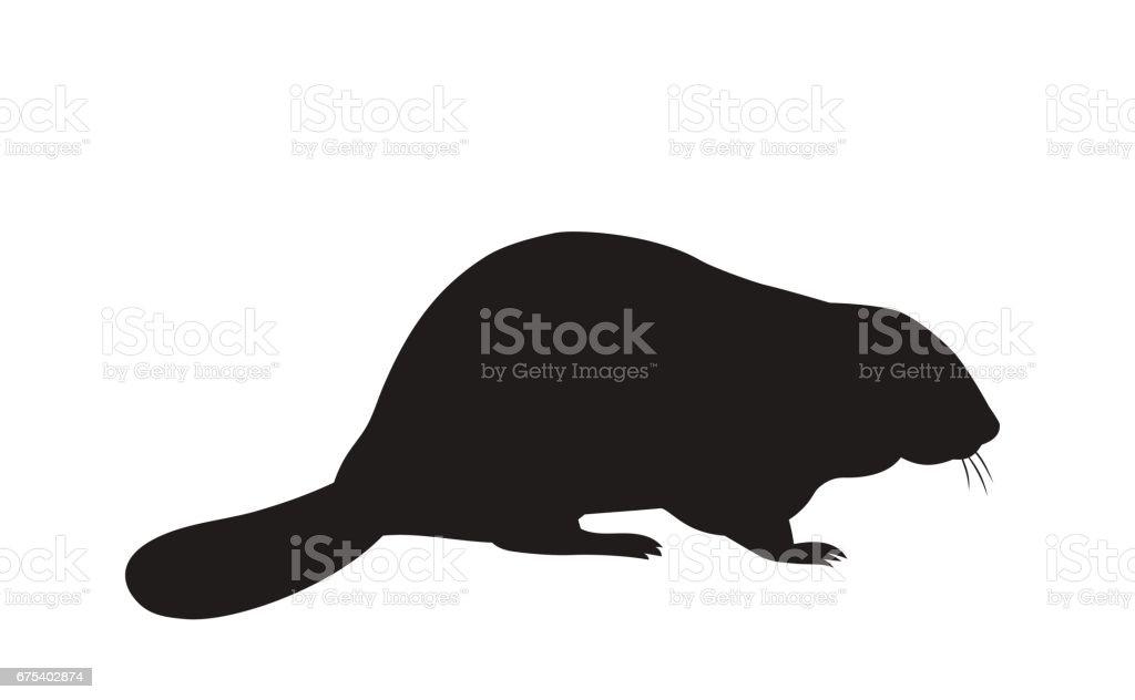 silhouette d'un castor assis - Illustration vectorielle