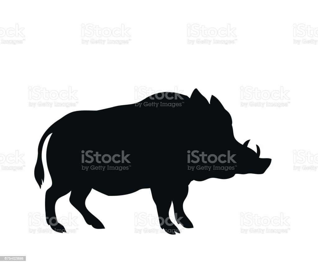 royalty free wild boar clip art vector images illustrations istock rh istockphoto com wild boar clipart black and white
