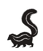 vector silhouette of a standing skunk