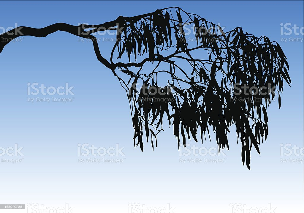 Silhouette of a tree branch and leaves against a blue sky royalty-free stock vector art