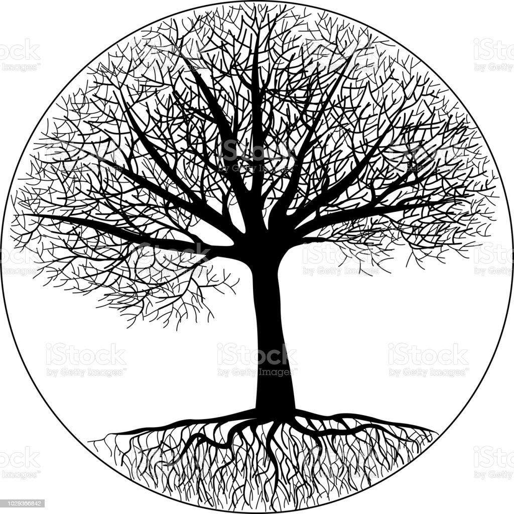 ilustración de silueta de un árbol con raíces y ramas desnudas en