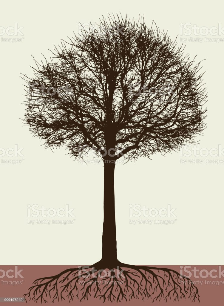 Silhouette of a tree with the roots vector art illustration