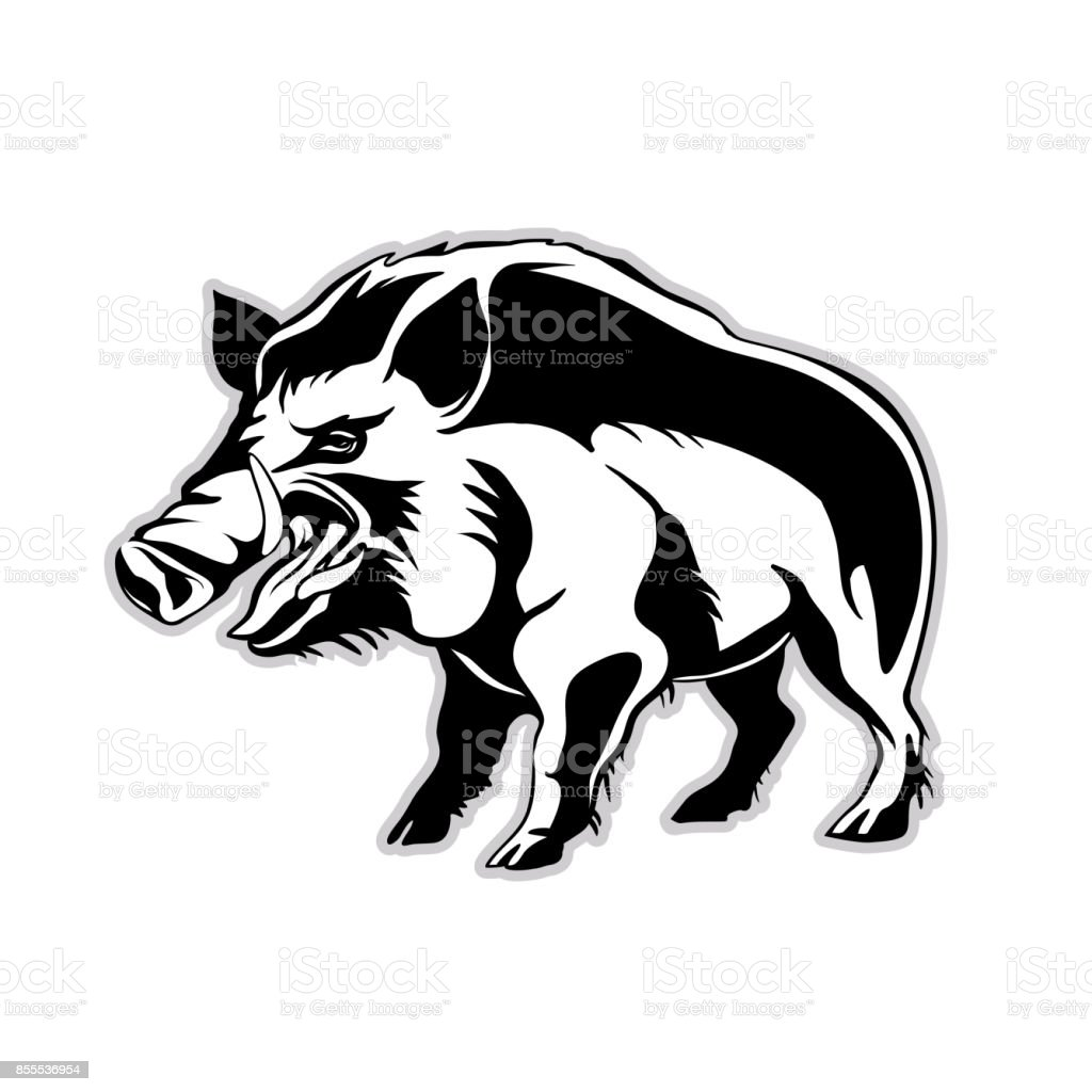Silhouette Of A Wild Boar A Wild Pig Stock Vector Art & More Images ...