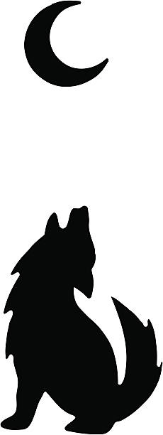 A silhouette of a wolf howling at the moon Vector image of a coyote/wolf barking at the moon. silhouette of a howling coyote stock illustrations