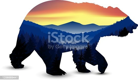 Silhouette of  bear with panorama of mountains. Valley(canyon).  Evening. Aurora.
