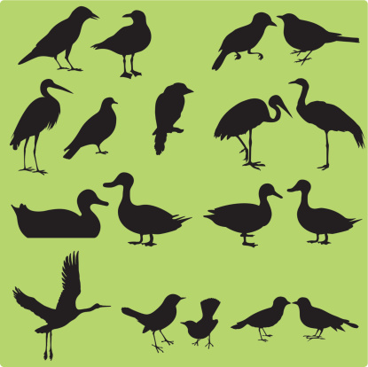 Silhouette Of Birds Seamless Background Vector Stock Illustration - Download Image Now