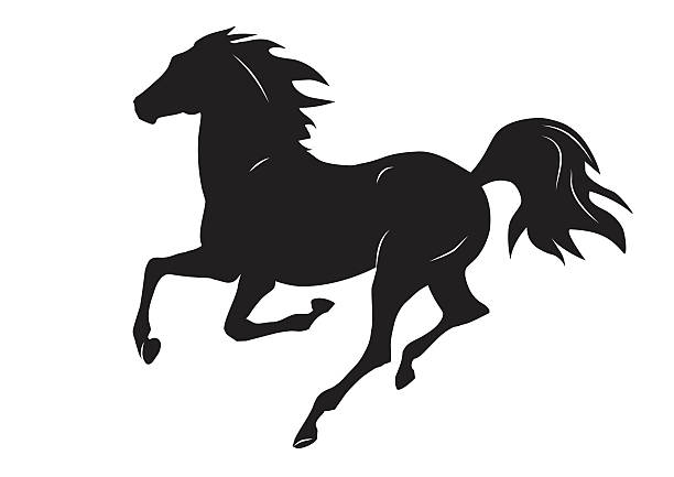 silhouette of black running horse - vector illustration - reiter stock-grafiken, -clipart, -cartoons und -symbole